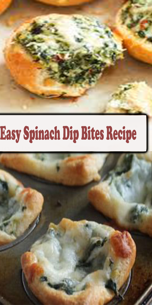 Easy Spinach Dip Bites Recipe 1